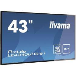 """Moniteur 43"""" AMVA LED 4K UHD HP VGA/DVI/HDMI"""