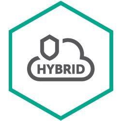 Endpoint Hybrid Cloud Security Server Enterprise