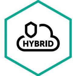Endpoint Hybrid Cloud Security Server