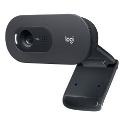 Caméra Logitech Webcam C505 HD
